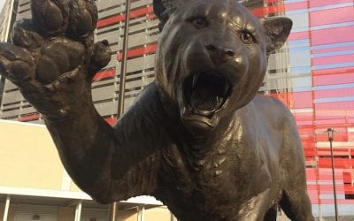 Bronze Cougar New Statue at University of Houston