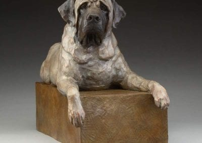 GlanzMastiff! view2